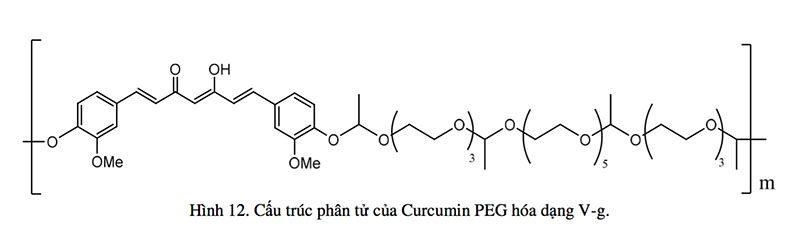 khoa-y-duoc-dh-quoc-gia-curcumin-peg-hoa-va-trien-vong-ung-dung-5