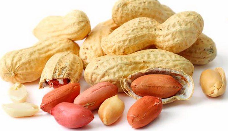 Đậu Phộng chữa viêm niêm mạc dạ dày, liệu bạn đã biết?