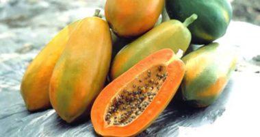 Top 10 thực phẩm chữa đau dạ dày theo kinh nghiệm dân gian!